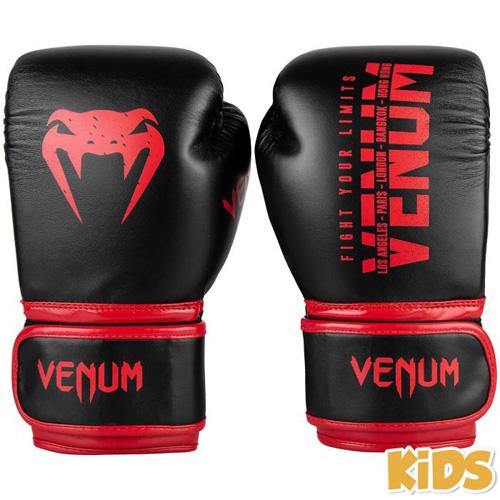 Venum Signature Boxing Gloves – Black/Red