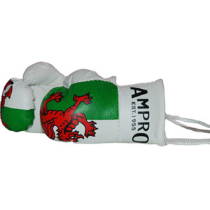 Ampro Wales Mini Hanging Boxing Gloves – Welsh Flag