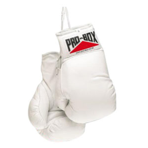 Pro-Box Autograph Gloves – White