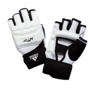 adidas WTF Approved Fighter Gloves