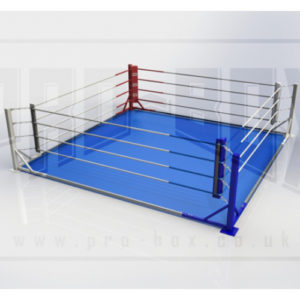Pro-Box Permanent Floor Fixed Rings – (With or Without Mats)