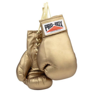 Pro-Box Golden Autograph Gloves