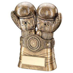 JR Boxing Gloves and Belt Trophy – Bronze/Gold