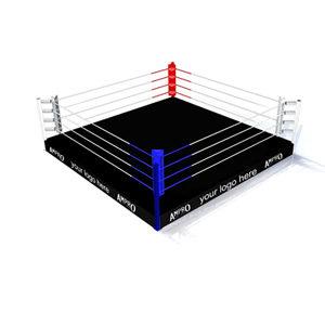 Ampro Pro Club Training Boxing Ring
