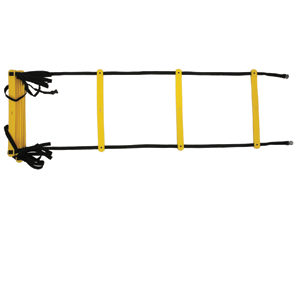 Ampro Training Ladder