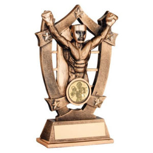 JR Male Boxer/Boxing 5 Star Trophy – Bronze/Gold