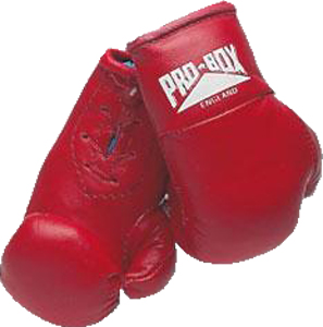 Pro-Box Boxing Miniature Leather Boxing Gloves – Red